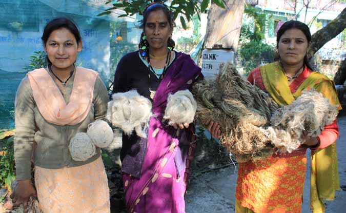 उत्तराखण्ड में कण्डाली की खेती हो सकती है रोजगार का सशक्त साधन