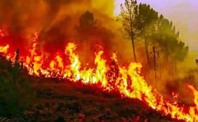 उत्तराखंड: आखिर कौन जिम्मेदार है इस आग के लिए…