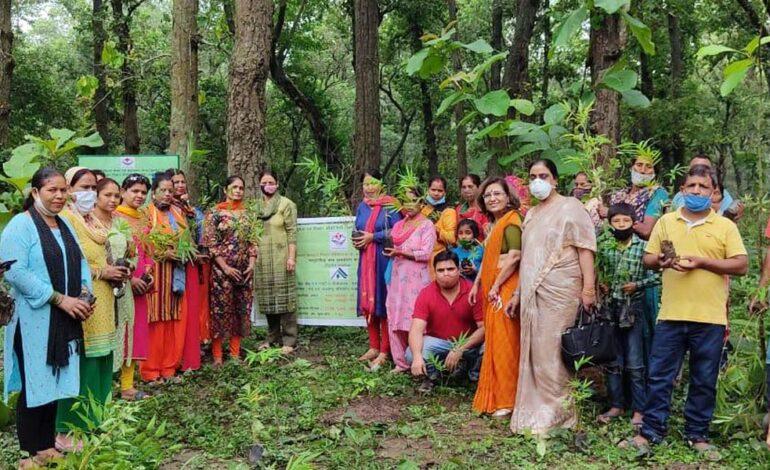 यूसर्क द्वारा वृहद स्तर पर सामुदायिक बाँस के वृक्षारोपण कार्यक्रम का आयोजन